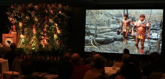 'I am part of the Amazon' - 'Az Amazonas része vagyok'