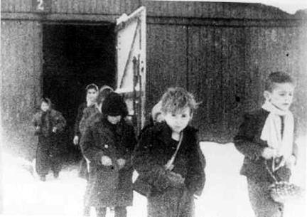 Child Survivors Auschwitz